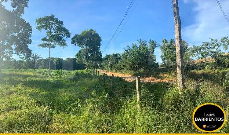 Terreno en venta sobre 2 caminos a la belgica (tarumatu)1139411398