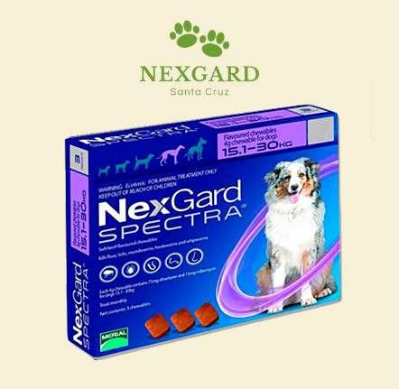 Nexgard1469613959