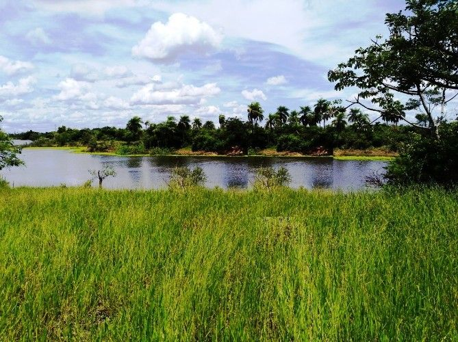 En venta hermoso terreno en la guardia, al lado de la laguna las garzas1001327444