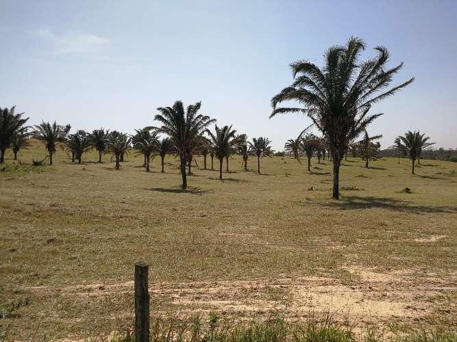 Exclusivo terreno de 5.5 hectareas628898021