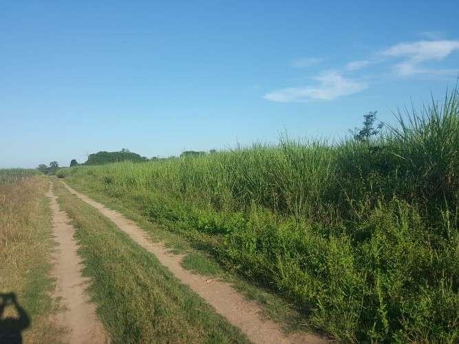 En venta terreno agrícola1961304104