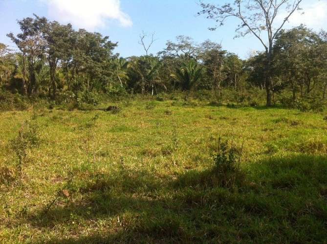103 hectáreas sobre camino a caranda1228553248