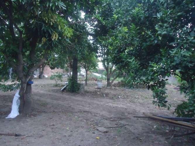 Terreno 960 m2 en zona comercial r-19916403717