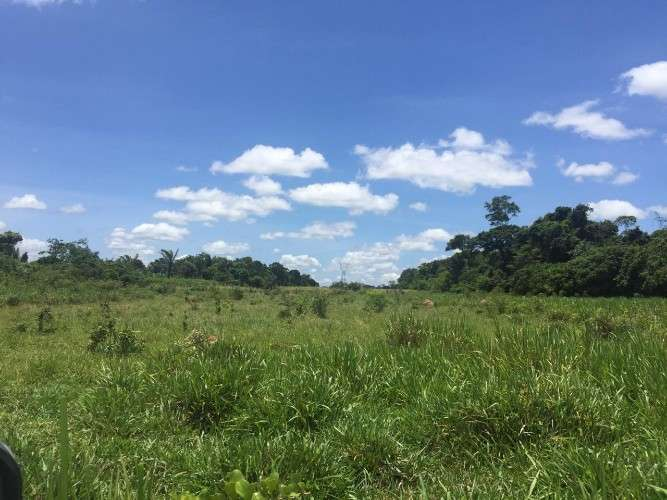 506 hectáreas en san isidro - caranda - zona norte 1648164091