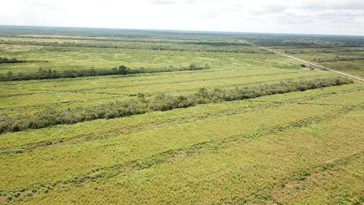 Propiedad en pailon sur 1750 ha total mente desmontada ganadera y agrícola694982861