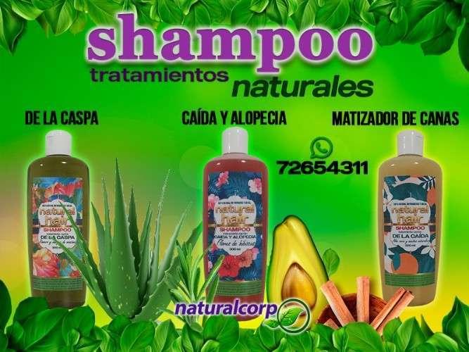 Shampoo Naturales 100%