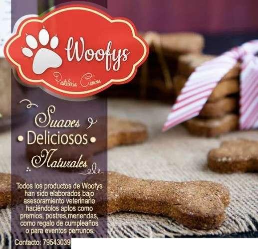 Woofy Pasteleria Canina