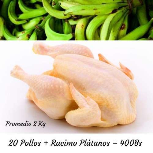 20 Pollos
